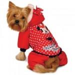 Магазин жилетов, костюмов, комбинезонов для собак