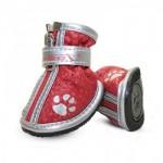 Магазин обуви и носочков для собак