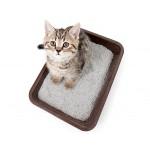 Каталог туалетных наполнителей для кошек