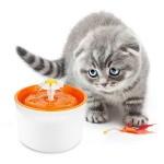 Магазин питьевых фонтанчиков для кошек
