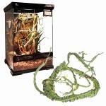 Магазин растений и декораций для рептилий