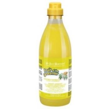 Iv San Bernard / Ив Сан Бернард Fruit of the Grommer Ginger&Elderbery Шампунь для любого типа шерсти против раздражений и перхоти 1 л