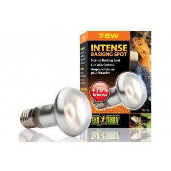 Exo Terra / Экзо Терра Лампа для баскинга Intense basking spot  75 Вт. 63mm. PT2136