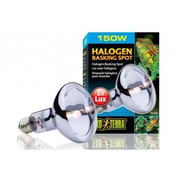 Exo Terra / Экзо Терра Лампа дневного света Halogen Basking Spot 150 Вт. /широкого спектра/ PT2184