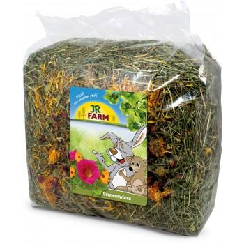 JR Farm 06973 Сено-цветочный луг, 500 гр