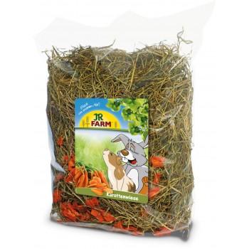 JR Farm 06977 Сено с добавлением моркови, 500 гр