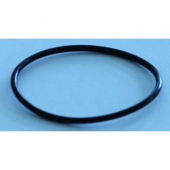 Sicce / Сичче Уплотнительное кольцо для помпы SYNCRA NANO