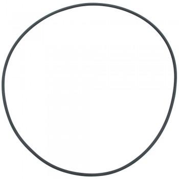 Hagen / Хаген Уплотнительное кольцо для головы фильтра Fluval FX4/FX5/FX6 A20210