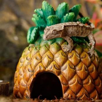 Exo Terra / Экзо Терра Укрытие ананас Exo Terra Pineapple Hide 13х13х16 см. PT3160