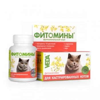 Veda / Веда Фитомины для Кастрированных котов, 100 таб.
