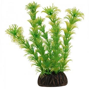 "Laguna / Лагуна Растение ""Амбулия"" жёлто-зеленая, 100мм"