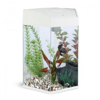 "АА-Aquarium Аквариум ""Hexagon"" 22л, белый, 330*300*433мм"