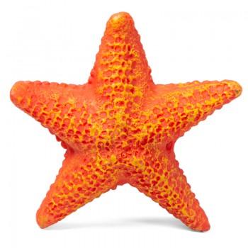 Laguna / Лагуна Звезда морская малая, 85*85*23мм