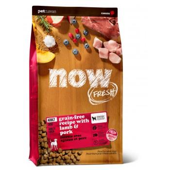 Now! / Нау! Беззерновой для взрослых собак со свежим мясом ягненка (Grain Free Red Meat Adult Recipe DF 24/16), 9,98 кг