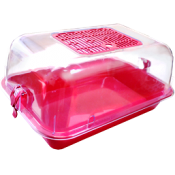 ZOOexpress Террариум средний с пласт.дверкой прозрачный 40х27х18 15012