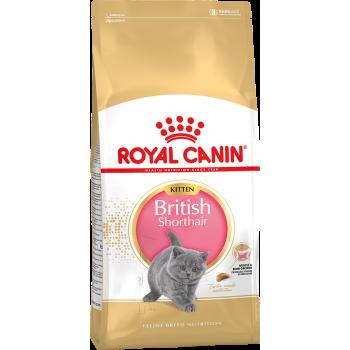 Royal Canin / Роял Канин Kitten British Shorthair 34 питание для британских котят в возрасте от 4-х до 12-ти мес.,беременных и лактирующих кошек 10 кг