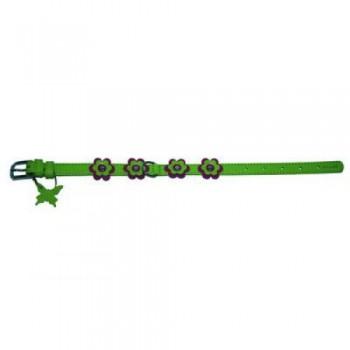CoLLaR Glamour Ошейник кожаный, двойной прошитый с украшением аппликация, 27-36см*15мм, зеленый (35015)