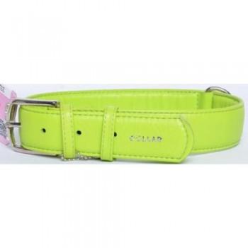 CoLLaR Glamour Ошейник кожаный, двойной прошитый без украшений, 46-60см*35мм, зеленый (33225)