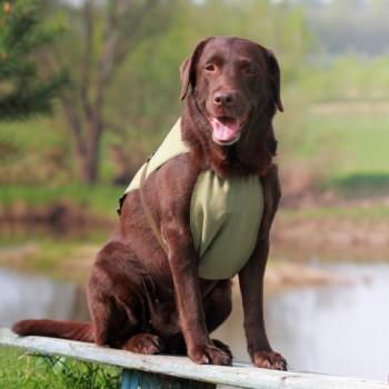 OSSO / ОССО Fashion Попона охлаждающая для собак р. 40 О-1012