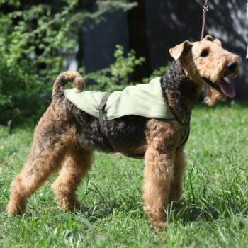 OSSO / ОССО Fashion Попона охлаждающая для собак р. 25 О-1009
