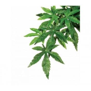 Hagen / Хаген Тропическое растение Jungle Plants пластиковое, Абутилон, большое,80х20см