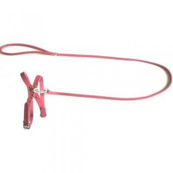 Аркон Комплект №8, цвет красный, к8кр, однослойный поводок шириной 8мм + шлейка 8 для кошек и маленьких собак (35744)