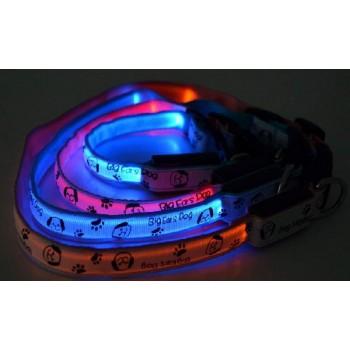 V.I.Pet Ошейник с USB-зарядкой светящ. «Собачки и лапки», 20мм, (50-60см) 14-3400UXL 14-3400UXL