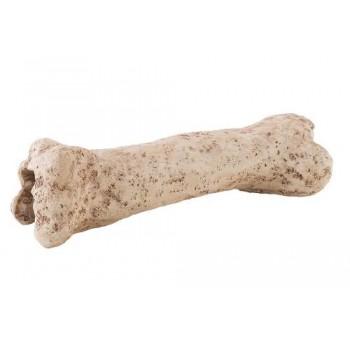 Hagen / Хаген Убежище-декор кость динозавра