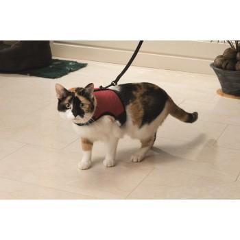 I.P.T.S. 730284 Шлейка д/кошек с поводком и колокольчиком