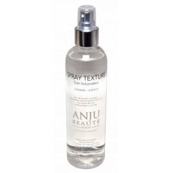 Anju Beaute Спрей для придания Объема (Texture Spray) (AN90)