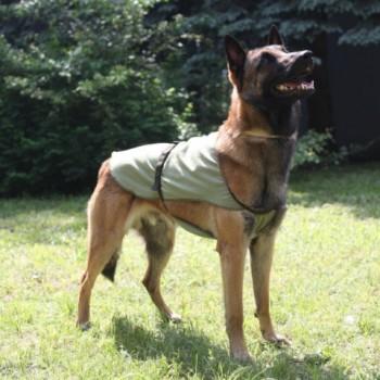 OSSO / ОССО Fashion Попона охлаждающая для собак р. 35 О-1011