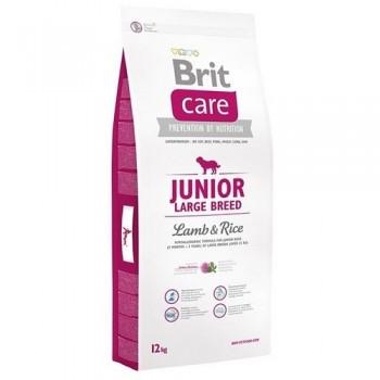 Brit / Брит Care Junior Large Breed д/щенков крупных пород, ягненок с рисом, 3 кг