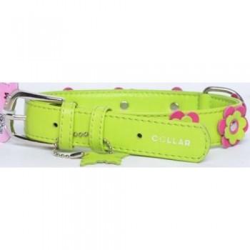 CoLLaR Glamour Ошейник кожаный, двойной прошитый с украшением аппликация, 38-49см*25мм, зеленый (35035)