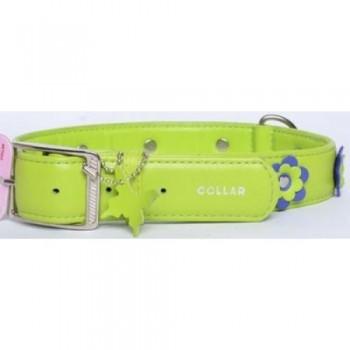 CoLLaR Glamour Ошейник кожаный, двойной прошитый с украшением аппликация, 46-60см*35мм, зеленый (35045)