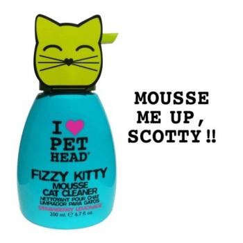 Pet Head Шампунь-мусс клубнично-Лимонадный без смывания для кошек (FIZZY KITTY)