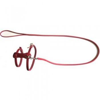 Аркон Комплект кожаный №2, цвет красный, к2кр, двухслойный прошитый поводок шириной 6мм + шлейка для кошек и маленьких собак (35713)
