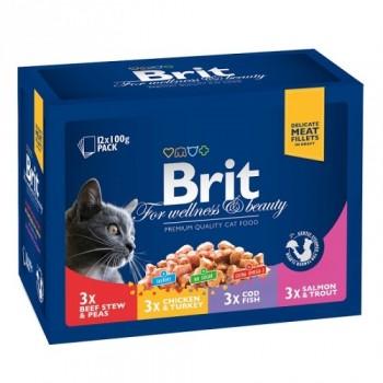 Brit / Брит Премиум набор паучей д/кошек Family Plate Семейная тарелка,12*100г