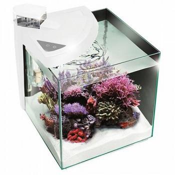 Newa Аквариум More reef NMO50RW, 45 л, белый